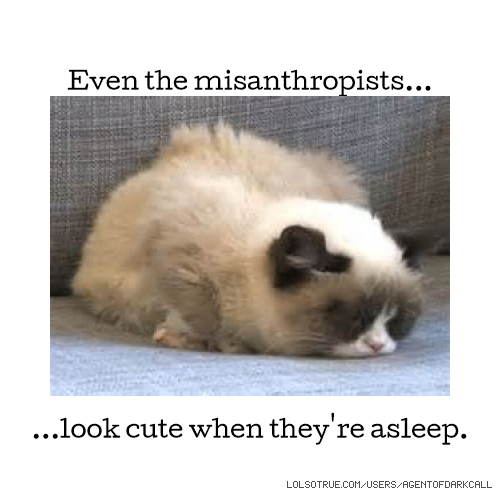 Even the misanthropists... ...look cute when they're asleep.