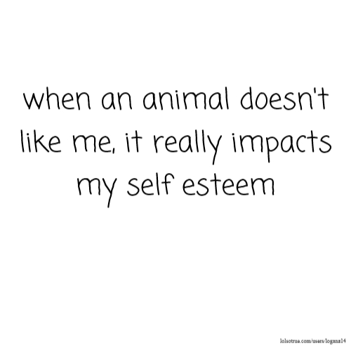 when an animal doesn't like me, it really impacts my self esteem