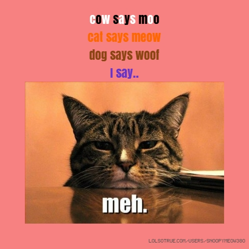cow says moo cat says meow dog says woof I say..