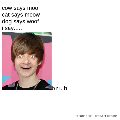cow says moo cat says meow dog says woof i say..... bruh