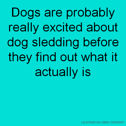 Dogs are probably really excited about dog sledding before they find out what it actually is