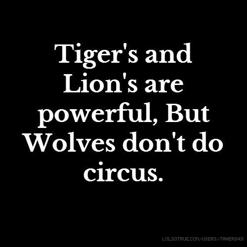 Tiger's and Lion's are powerful, But Wolves don't do circus.