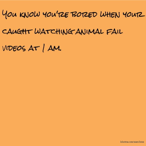 You know you're bored when your caught watching animal fail videos at 1 am.