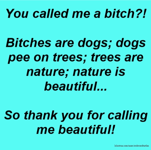 You called me a bitch?! Bitches are dogs; dogs pee on trees; trees are nature; nature is beautiful... So thank you for calling me beautiful!