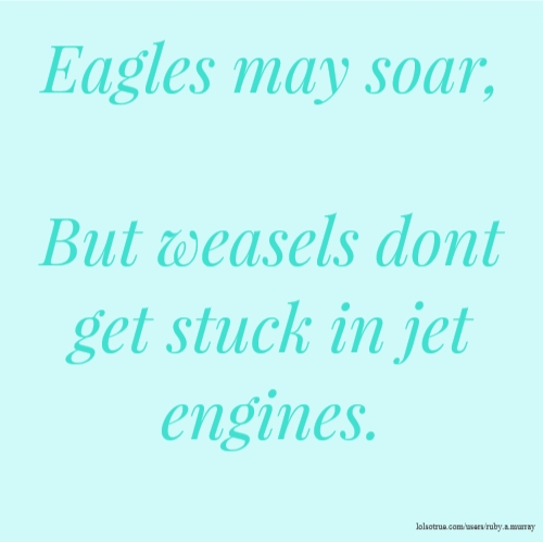 Eagles may soar, But weasels dont get stuck in jet engines.