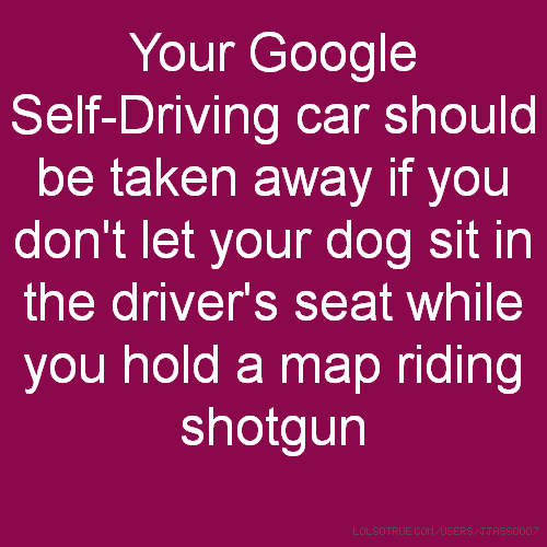 Your Google Self-Driving car should be taken away if you don't let your dog sit in the driver's seat while you hold a map riding shotgun