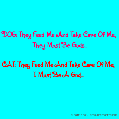 DOG: They Feed Me And Take Care Of Me; They Must Be Gods... CAT: They Feed Me And Take Care Of Me; I Must Be A God...