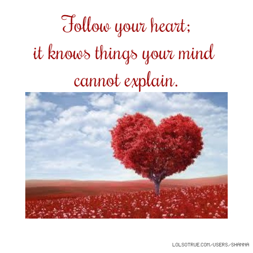 Follow Heart Or Mind Quotes: Follow Your Heart; It Knows Things Your Mind Cannot Explain