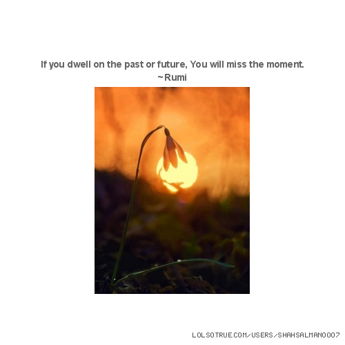 If you dwell on the past or future, You will miss the moment. ~Rumi
