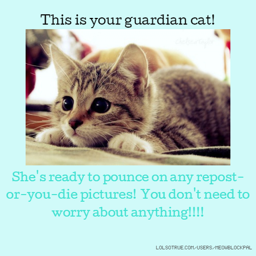 This is your guardian cat! She's ready to pounce on any repost-or-you-die pictures! You don't need to worry about anything!!!!