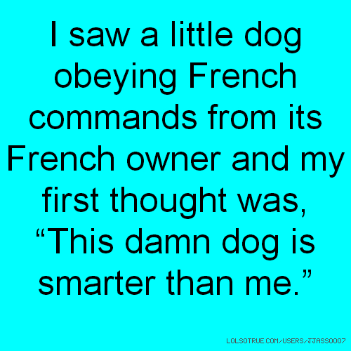 "I saw a little dog obeying French commands from its French owner and my first thought was, ""This damn dog is smarter than me."""