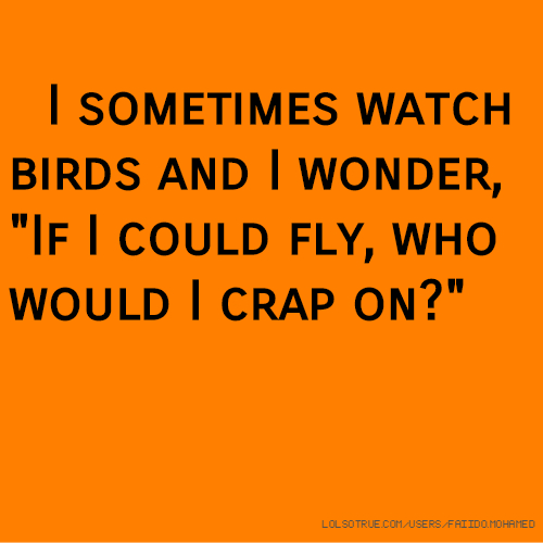 """I sometimes watch birds and I wonder, """"If I could fly, who would I crap on?"""""""