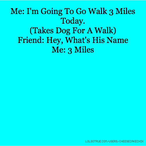 Me: I'm Going To Go Walk 3 Miles Today. (Takes Dog For A Walk) Friend: Hey, What's His Name Me: 3 Miles