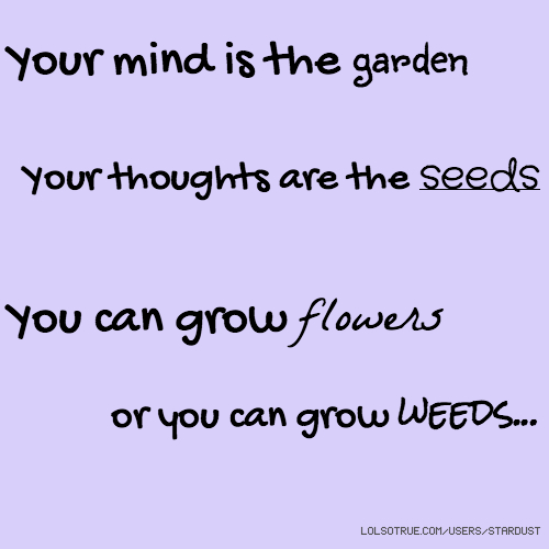 Your mind is the garden Your thoughts are the seeds You can grow flowers or you can grow weeds...