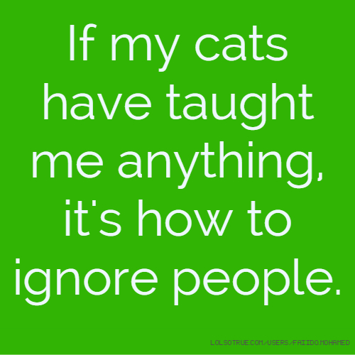 If my cats have taught me anything, it's how to ignore people.