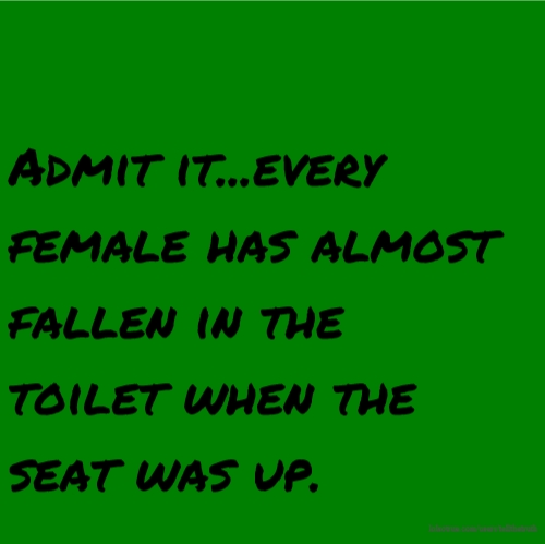 Admit it...every female has almost fallen in the toilet when the seat was up.