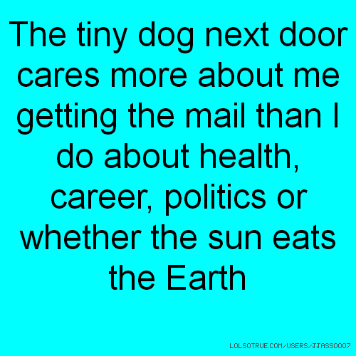 The tiny dog next door cares more about me getting the mail than I do about health, career, politics or whether the sun eats the Earth