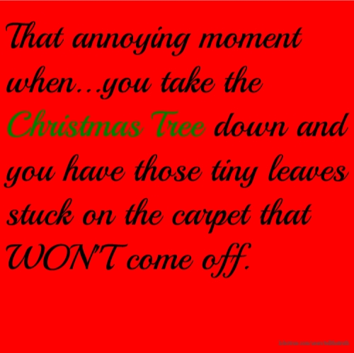 That annoying moment when...you take the Christmas Tree down and you have those tiny leaves stuck on the carpet that WON''T come off.
