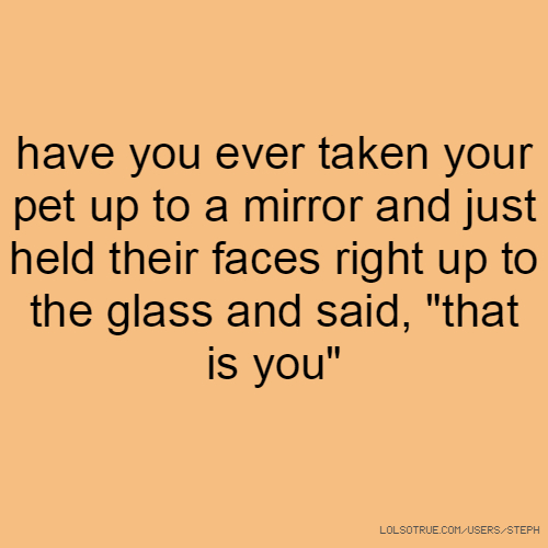 """have you ever taken your pet up to a mirror and just held their faces right up to the glass and said, """"that is you"""""""