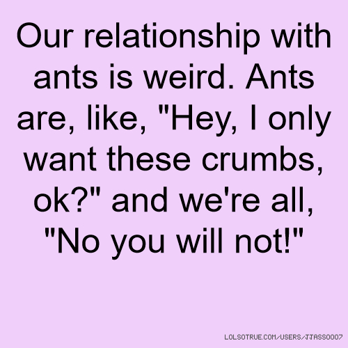 "Our relationship with ants is weird. Ants are, like, ""Hey, I only want these crumbs, ok?"" and we're all, ""No you will not!"""