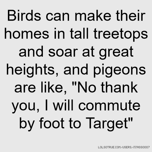 "Birds can make their homes in tall treetops and soar at great heights, and pigeons are like, ""No thank you, I will commute by foot to Target"""