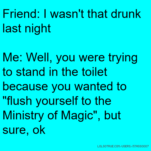 """Friend: I wasn't that drunk last night Me: Well, you were trying to stand in the toilet because you wanted to """"flush yourself to the Ministry of Magic"""", but sure, ok"""