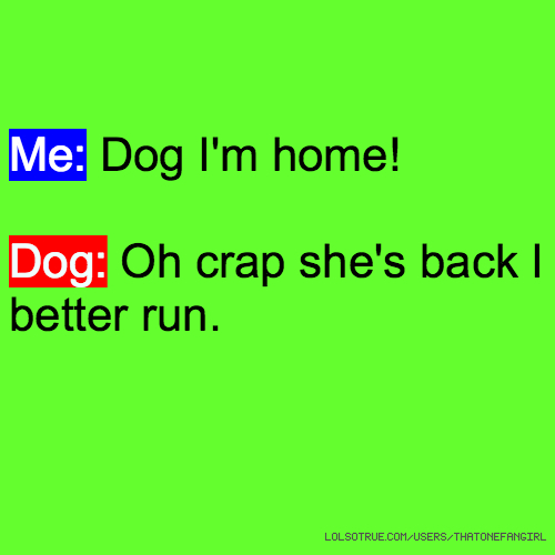 Me: Dog I'm home! Dog: Oh crap she's back I better run.