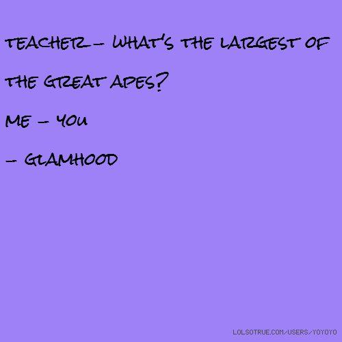 teacher - what's the largest of the great apes? me - you - glamhood