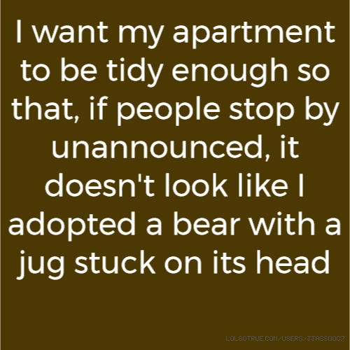 I want my apartment to be tidy enough so that, if people stop by unannounced, it doesn't look like I adopted a bear with a jug stuck on its head