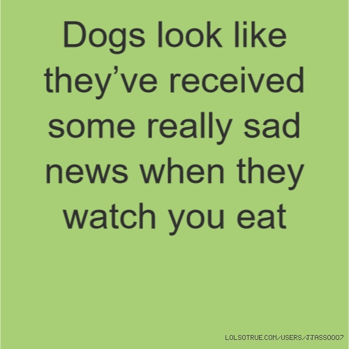 Dogs look like they've received some really sad news when they watch you eat