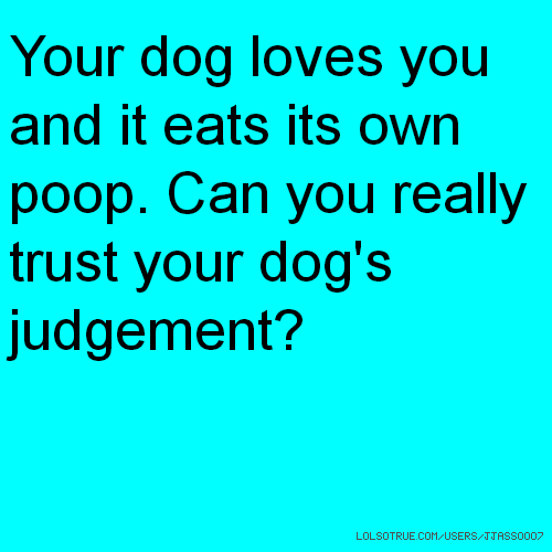 Your dog loves you and it eats its own poop. Can you really trust your dog's judgement?