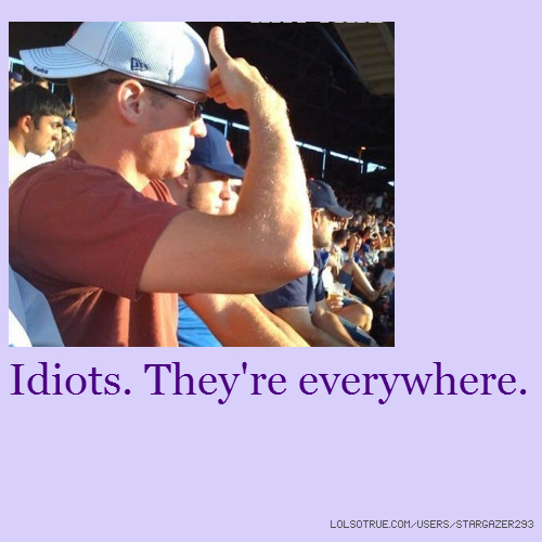 Idiots. They're everywhere.