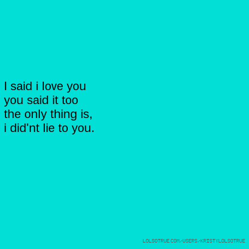 I said i love you you said it too the only thing is, i did'nt lie to you.