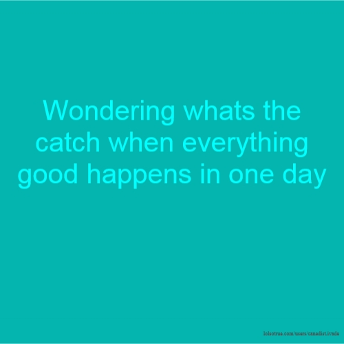 Wondering whats the catch when everything good happens in one day