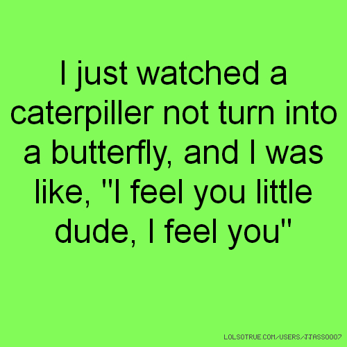 "I just watched a caterpiller not turn into a butterfly, and I was like, ""I feel you little dude, I feel you"""