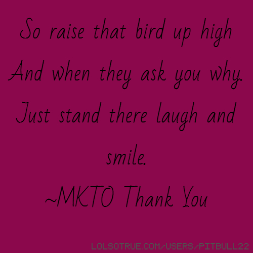 So raise that bird up high And when they ask you why. Just stand there laugh and smile. ~MKTO Thank You