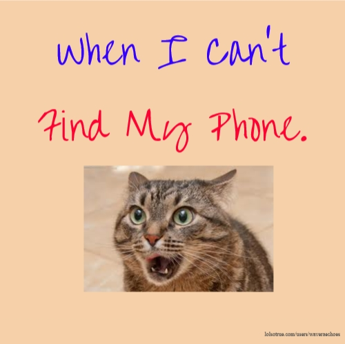 When I Can't Find My Phone.