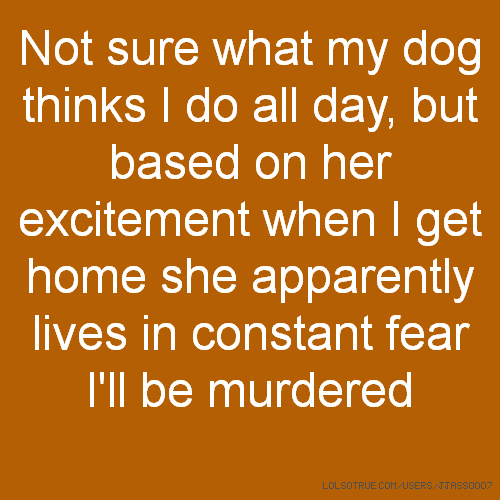 Not sure what my dog thinks I do all day, but based on her excitement when I get home she apparently lives in constant fear I'll be murdered
