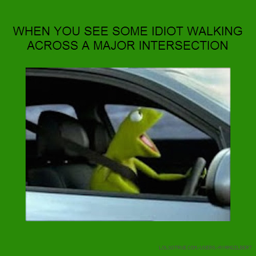 WHEN YOU SEE SOME IDIOT WALKING ACROSS A MAJOR INTERSECTION