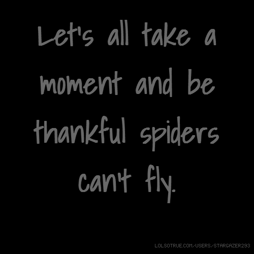 Let's all take a moment and be thankful spiders can't fly.