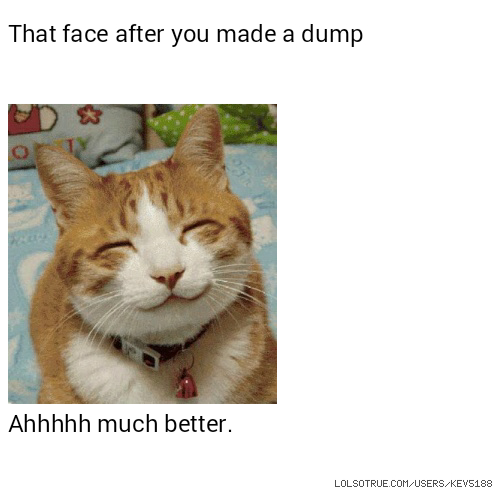 That face after you made a dump Ahhhhh much better.