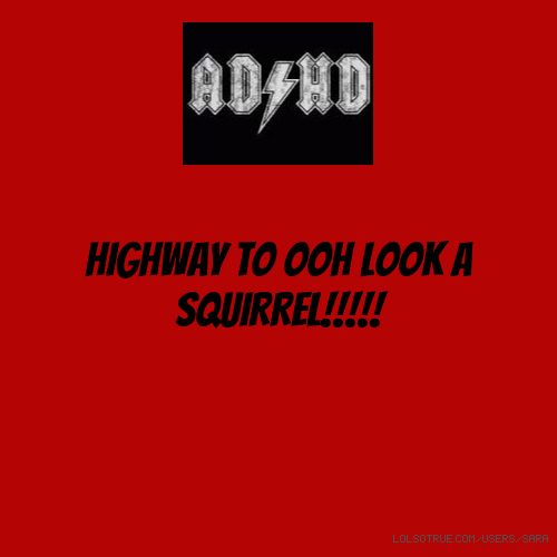 HIGHWAY TO OOH LOOK A SQUIRREL!!!!!