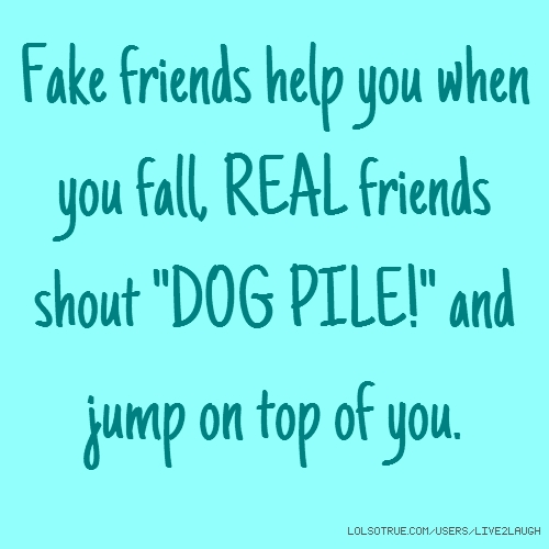 "Fake friends help you when you fall, REAL friends shout ""DOG PILE!"" and jump on top of you."