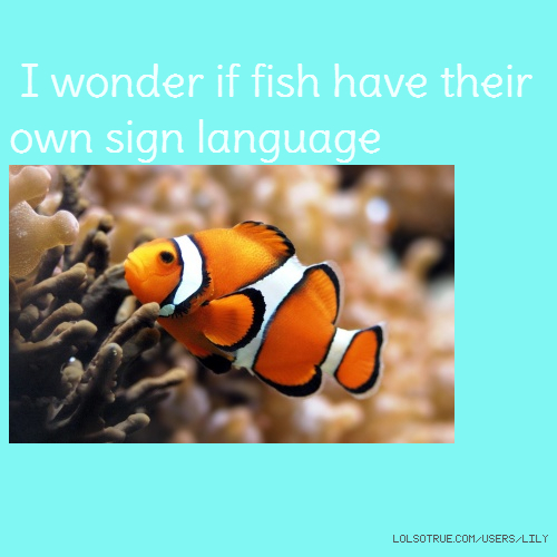 I wonder if fish have their own sign language