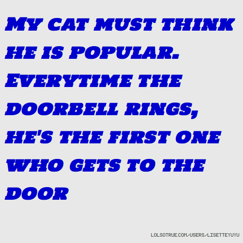 My cat must think he is popular. Everytime the doorbell rings, he's the first one who gets to the door