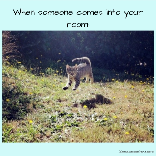 When someone comes into your room: