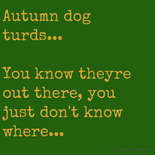 Autumn dog turds... You know theyre out there, you just don't know where...