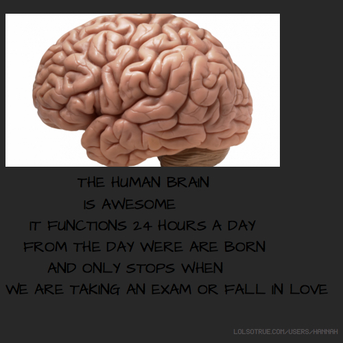 THE HUMAN BRAIN IS AWESOME IT FUNCTIONS 24 HOURS A DAY FROM THE DAY WERE ARE BORN AND ONLY STOPS WHEN WE ARE TAKING AN EXAM OR FALL IN LOVE