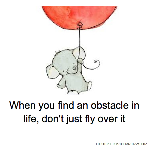 When you find an obstacle in life, don't just fly over it