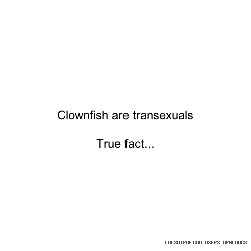 Clownfish are transexuals True fact...